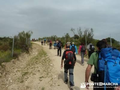 Senderismo Madrid - Pantano de San Juan - Embalse de Picadas; madroño: patones